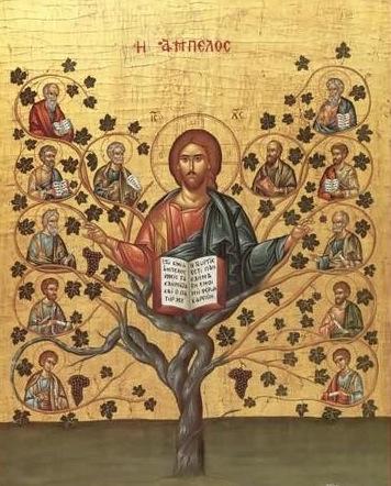 Yo soy la vid y mi Padre el viñador Jesucristo-la-vid-y-los-sarmientos